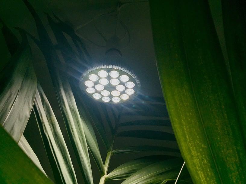 Led lamp 36W