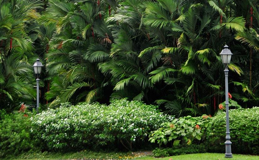 Botanical Gardens and Green Houses