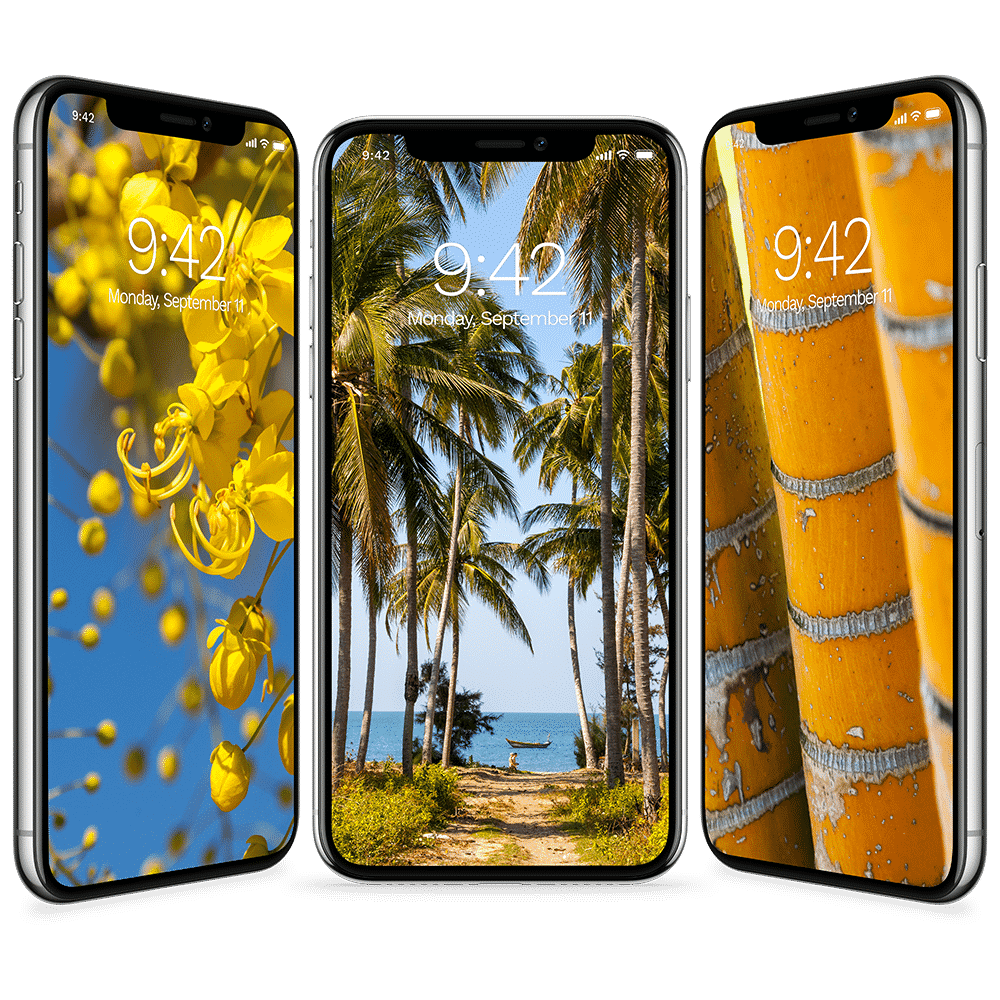Old Iphone Wallpapers: Free Tropical Wallpapers For IPhone X And IPhone 8 And Older