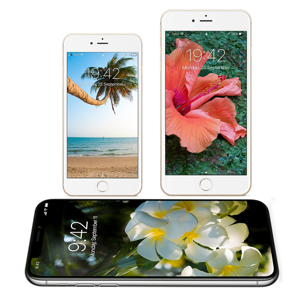 Home Wallpaper Phone: Free Tropical Wallpapers For IPhone X And IPhone 8 And Older